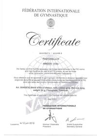 FIG Approved Ribbon Stick Certificate