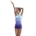 Basic SHADE Rhythmic  Leaotards: Pastorelli Collection Pastorelli Sport Rhythmic Gymnastics