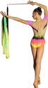 NIKY Rhythmic  Leaotards: Pastorelli Collection Pastorelli Sport Rhythmic Gymnastics